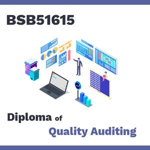 quality-audit